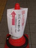 Tsubame03