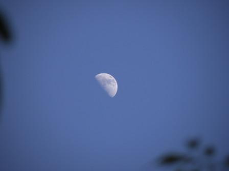 20130419_moon02