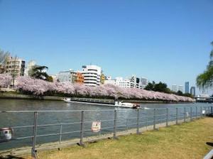 20120412_nakanoshima